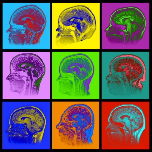 warhol-brains-small