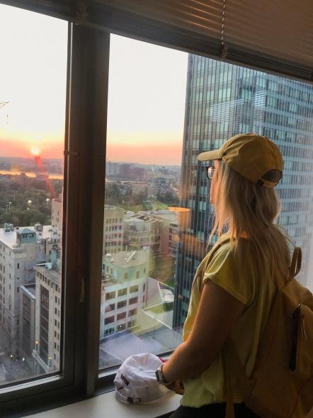 Bosotn-views.JPG